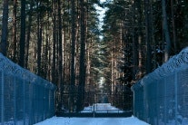 Military facility in a forest