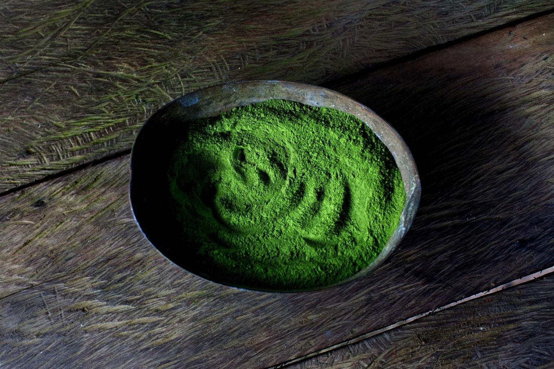Una vasija de barro con coca hojas de vivo color verde