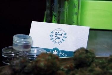 Interior of a cannabis social club