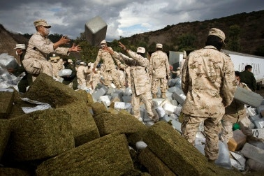 Soldiers gathering bales of marijuana