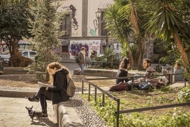 Persone sedute in un parco