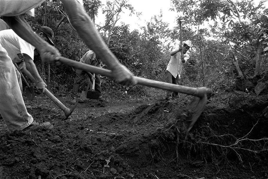 Close up of tools digging.
