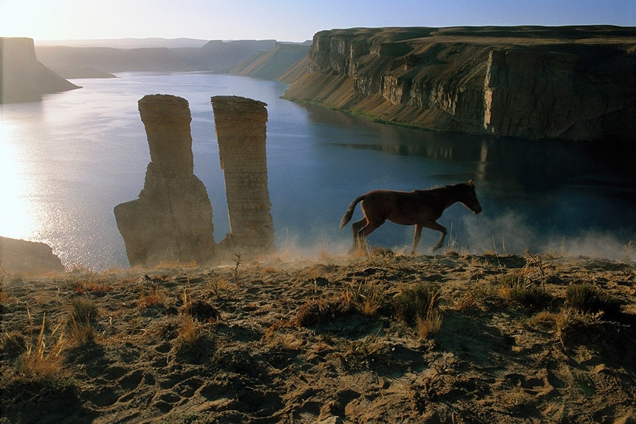 A horse in front of ruins and a lake.