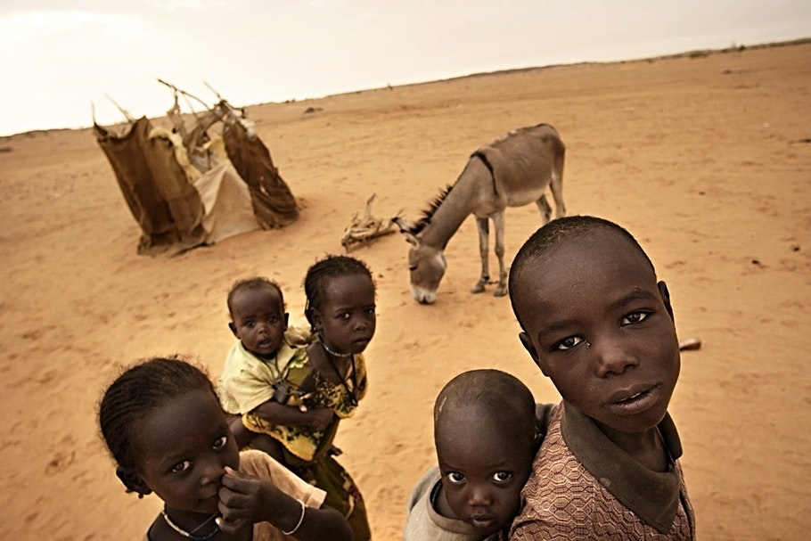 Children in front of a donkey.