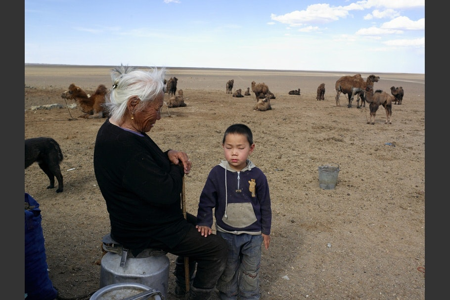 A woman and child in front of camels.