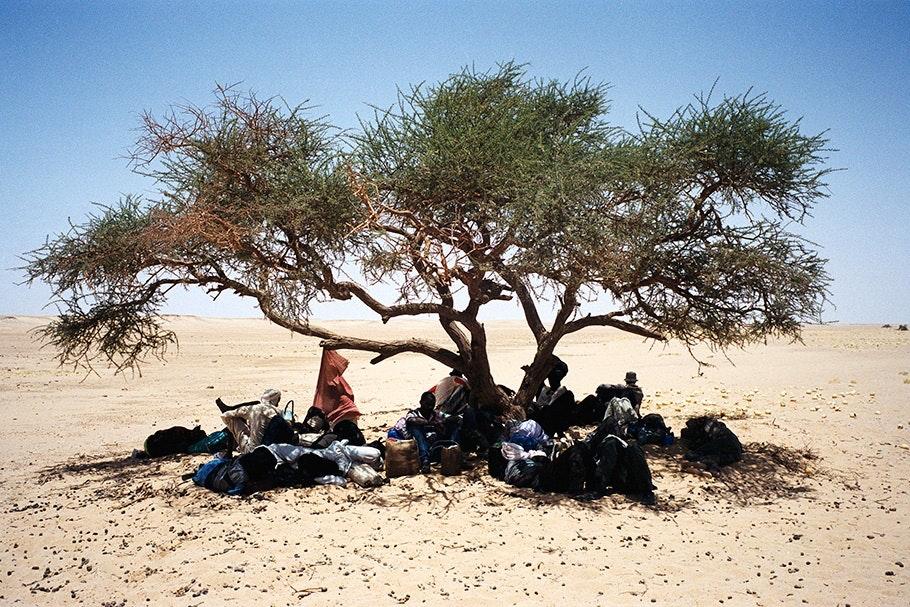 Men under a tree in the desert.