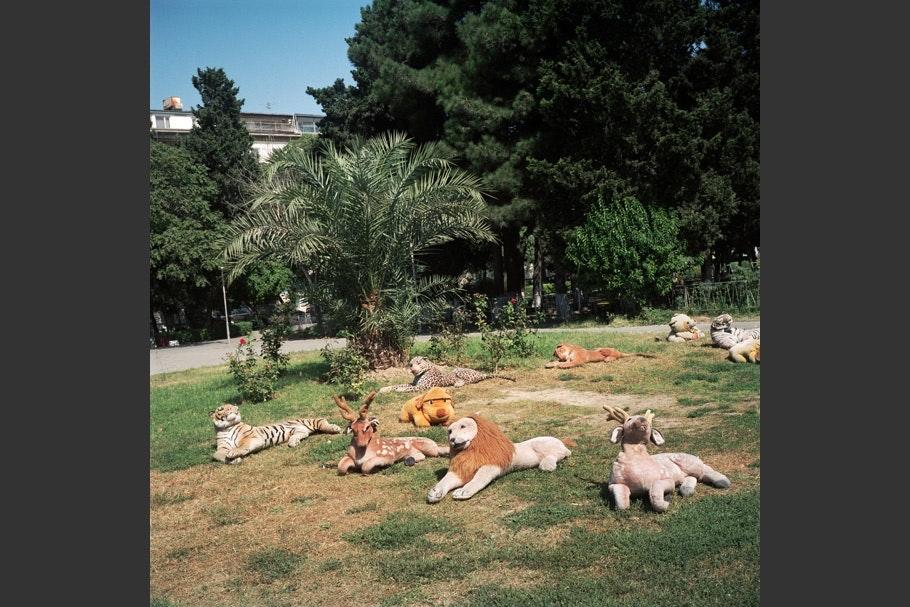 Stuffed animals on grass.
