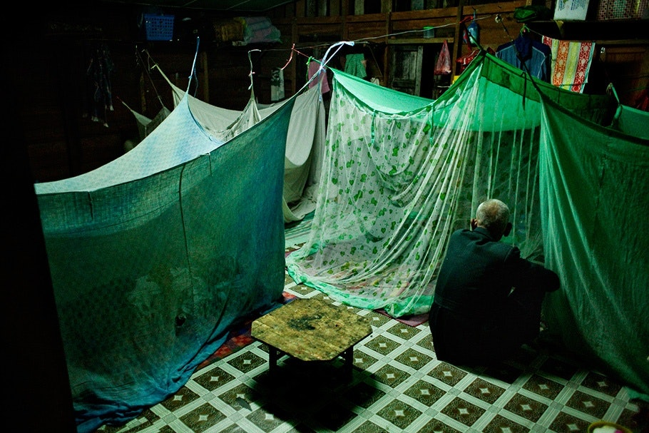 Green mosquito nets.