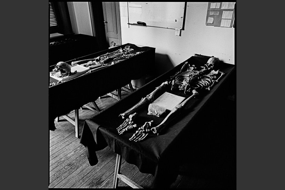 Skeletal remains on two examining tables covered in black cloth