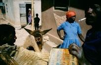 Street scene with a donkey.