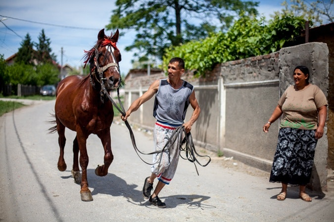A man with a horse