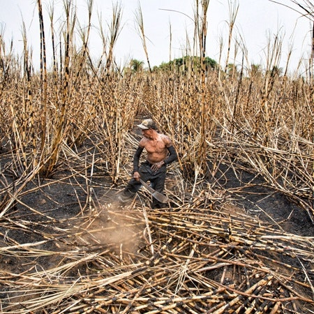 A man working in a field.