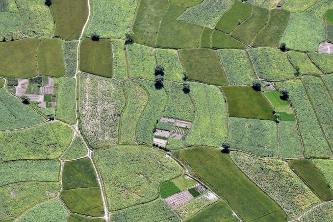 An aerial photo of green fields.